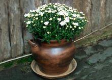 Keramický květináč s podmiskou - Buclák Velký