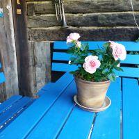 Keramický květináč včetně podmisky - klasik