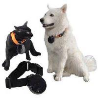 Kamera pro psa a jiné domácí mazlíčky PetCam