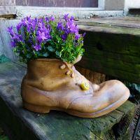 Květináč - Stará bota